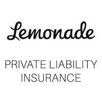 German liability insurance by Lemonade